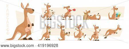 Kangaroo Characters. Wildlife Australian Animals Standing And Jumping Exact Vector Kangaroo In Actio