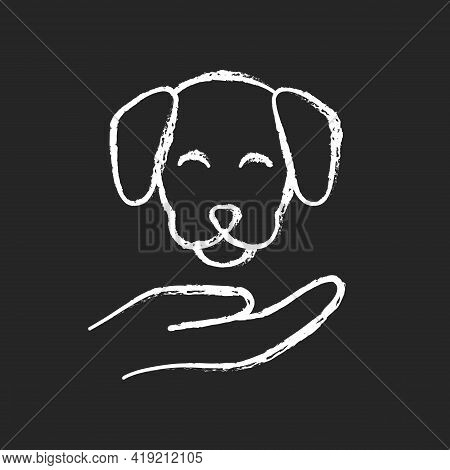 Pet Friendly Chalk White Icon On Black Background. Hotels Which Offer Range Of Amenities Designed To