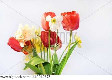 Very Nice Colorful Spring Garden Flower Bouquet