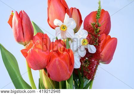 Very Nice Colorful Spring Garden Bouquet Flower