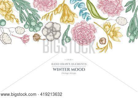 Floral Design With Pastel Ficus, Eucalyptus, Peony, Cotton, Freesia Brunia Stock Illustration