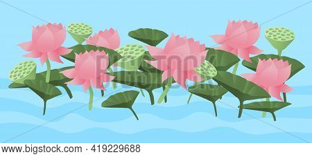 Vector Illustration Of Lotus Field With Lotus Flowers And Leaves