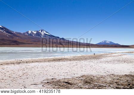 Laguna Hedionda Landscape,bolivia. Beautiful Bolivian Panorama. Blue Water Lagoon