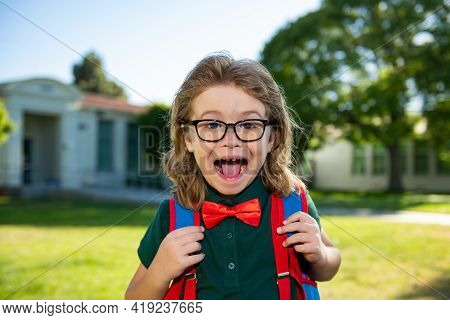 Schoolboy Ready To Study. Education And Learning For Kids. Portrait Of Elementary Amazed Pupil In Sc