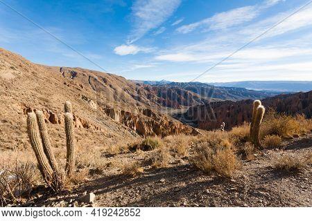 Bolivian Canyon Near Tupiza,bolivia