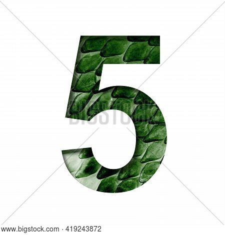 Dragon Scale Font. Digit Five, 5 Cut Out Of Paper On The Background Of The Dark Green Skin Of A Myst
