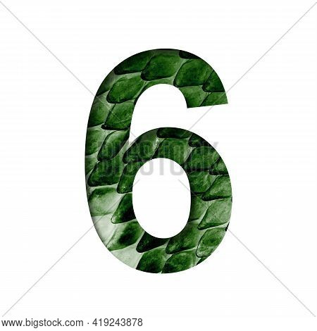 Dragon Scale Font. Digit Six, 6 Cut Out Of Paper On The Background Of The Dark Green Skin Of A Mysti