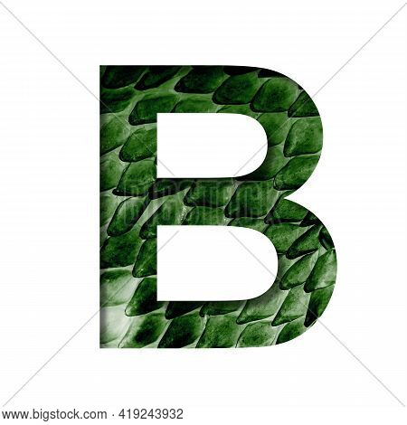 Dragon Skin Font. The Letter B Cut Out Of Paper On The Background Of The Dark Green Skin Of A Mystic