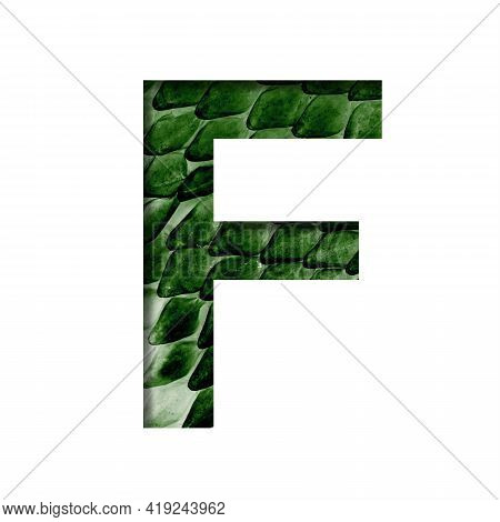 Dragon Skin Font. The Letter F Cut Out Of Paper On The Background Of The Dark Green Skin Of A Mystic