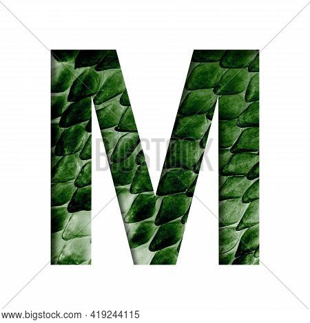 Dragon Skin Font. The Letter M Cut Out Of Paper On The Background Of The Dark Green Skin Of A Mystic