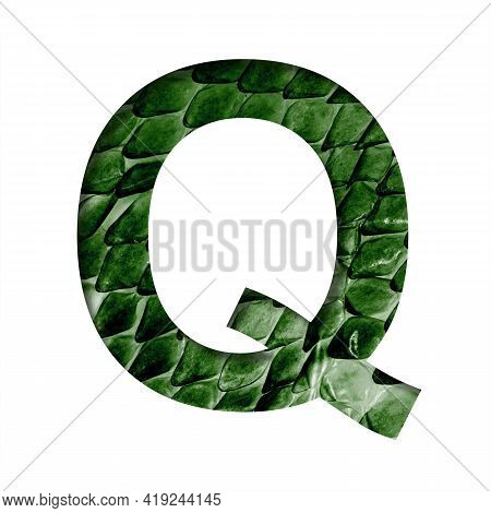 Dragon Skin Font. The Letter Q Cut Out Of Paper On The Background Of The Dark Green Skin Of A Mystic