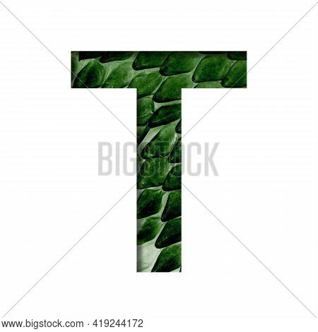 Dragon Skin Font. The Letter T Cut Out Of Paper On The Background Of The Dark Green Skin Of A Mystic