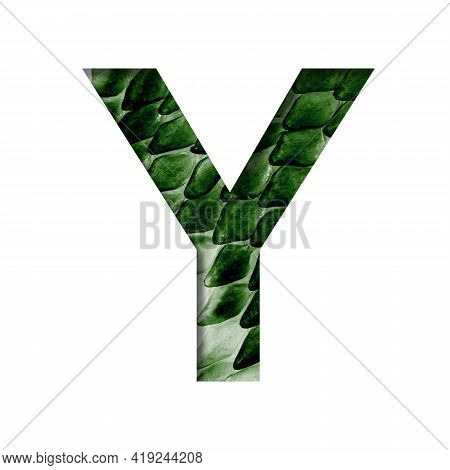 Dragon Skin Font. The Letter Y Cut Out Of Paper On The Background Of The Dark Green Skin Of A Mystic