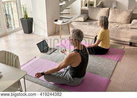 Fit Serene Retired Older Mid Aged Senior Couple Meditating Learning Virtual Yoga Class, Doing Breath