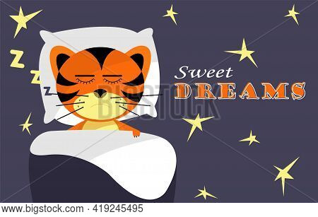 Cute Dreaming Tigers With Text Sweet Dreams On Nighty Background. Tiger Cub Sleeping On Soft Pillow