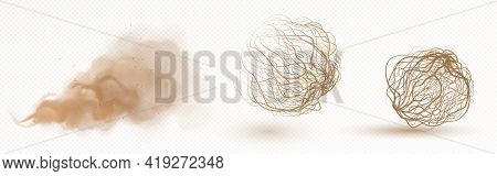 Tumbleweed, Dry Weed Ball And Brown Dust Clouds Isolated On Transparent Background. Vector Realistic