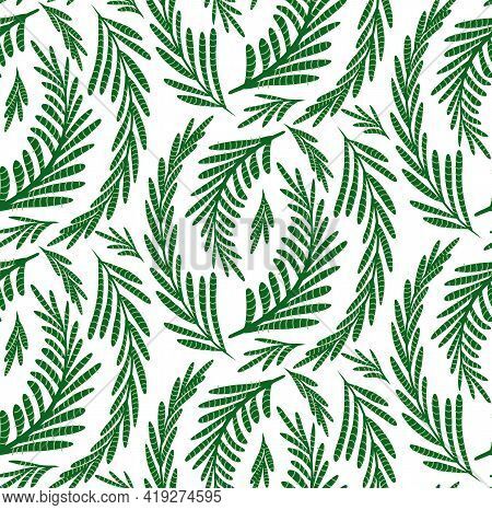 Fennel Herbaceous Seamless Pattern On A White Background. Fabric With Grass Fields. Wallpaper With A