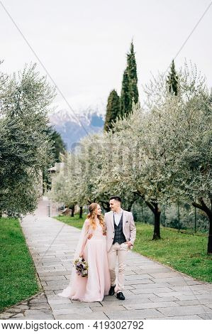 Newlyweds Walk On A Path In A Blooming Olive Grove In Lake Como, Italy