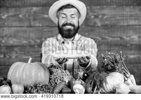 Farmer Presenting Organic Homegrown Vegetables. Homegrown Organic Harvest Benefits. Grow Organic Cro