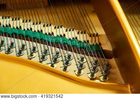 piano deck close view, chords and other parts, grand piano musical instrument