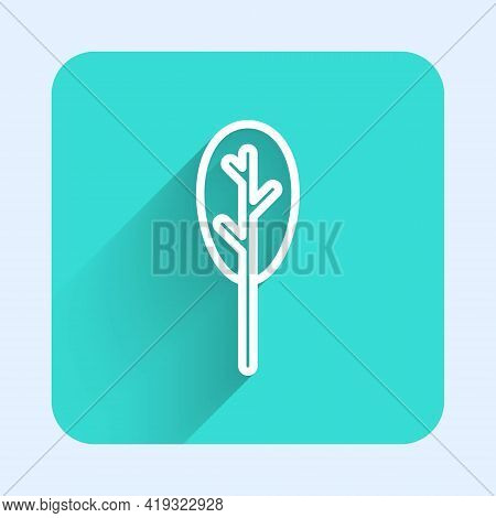 White Line Spinach Icon Isolated With Long Shadow. Green Square Button. Vector