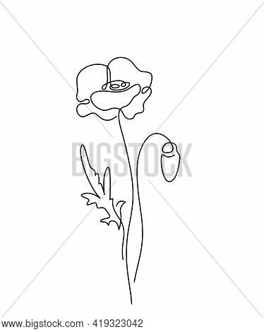 Poppy Flower Vector Illustration In Simple Minimal Continuous Outline Line Style. Nature Blossom Art