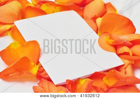 Sheet Of White Paper On Orange Rose Petals, Romantic Greeting Card