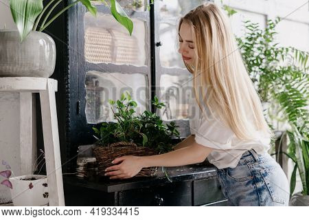Decoration With Fresh Plants In Room With Cozy Interior. Calm Young Woman In Casual Wear Holding Wic