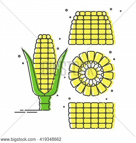 Whole Corn Cobs, In Parts And In A Cut. Organic Food. Young Ear Of Maize With Leaves. Healthy Eating