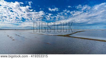 Flooded Rice Fields In Albufera Under Cloudy Sky