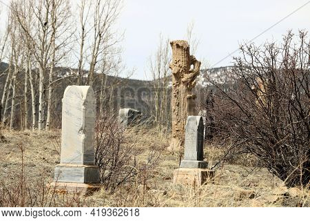Vintage Headstones On Grave Sites Surrounded By An Aspen Forest Taken At A Cemetery In The Past Mini