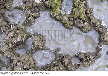 Frozen Small Ponds Background On Muddy Natural Terrain