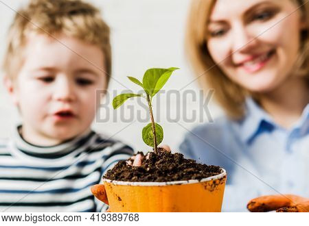Family Relationships. Mother With Little Son Planting Flower. Care For Plants. Gardening Discovering