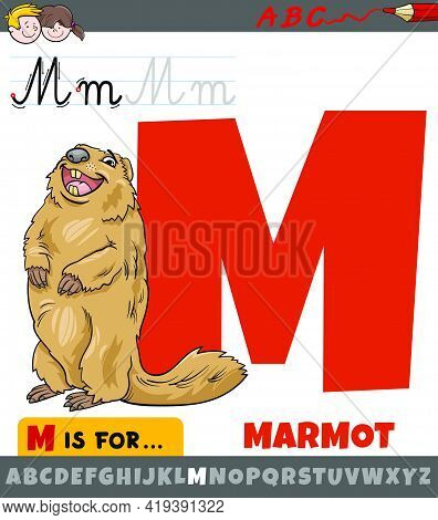 Educational Cartoon Illustration Of Letter M From Alphabet With Marmot Animal Character