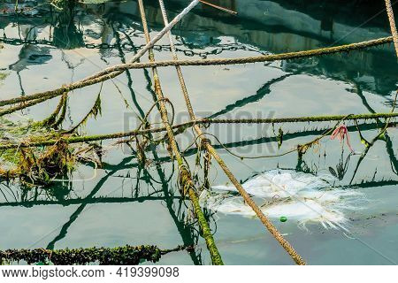 Various Sizes Of Rope And Trash Floating On Surface Of Water And Reflections Of Docked Boats.