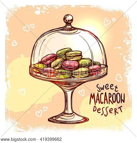 Multicolored Macaroon Cookies In Glass Candy Jar Sketch Vector Illustration