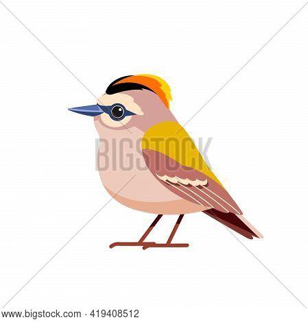 Goldcrest Is A Very Small Passerine Bird In The Kinglet Family. Tiny Bird Cartoon Flat Style Beautif