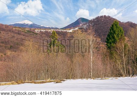 Forest On Snow Covered Meadow. Beautiful Mountain Landscape With Snow Capped Peak In The Distance On