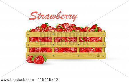 Cartoon Of Vegetarian Food, Crate Of Juicy Summer Berries. Vector Eco Farm, Market, Transportation,