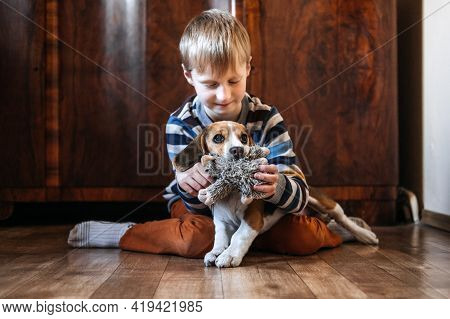 Games To Play With Beagle Puppies. How To Entertain Puppy And Adult Beagle Indoors, Fun Ways To Exer