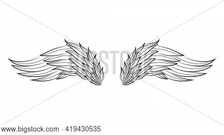 Vintage heraldic wings sketch. Doodle stylized birds wings. Hand drawn contoured stiker wing in open position. Design elements in coloring style