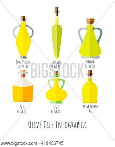 Infographic Presenting A Six Olive Oil Varieties