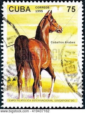 Cuba - Circa 1995: A Stamp Printed In Cuba Showing Arab Horse Circa 1995