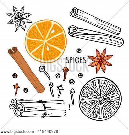 Collection. Mulled Wine Ingredients Set. Hand Drawn Winter Elements. Doodle Outline Vector Illustrat