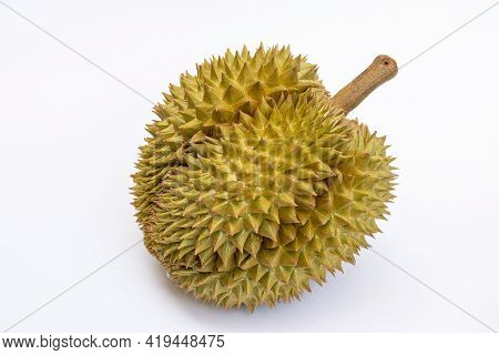 Durian Is A Fruit That Is Dubbed The King Of Tropical Fruits, Isolated On A White Background.