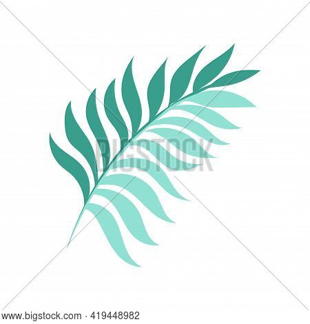 Graceful Green Twig. Contour Leaves. Vector Isolated Element. Garden Plant.
