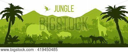 Jungle Vector Forest Silhouette Background, Tropical Rainforest Landscape, Tree Outlines, Leopard, R