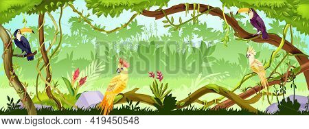 Jungle Forest Vector Nature Background, Wood Exotic Landscape, Green Liana, Parrot, Toucan, Trees, T