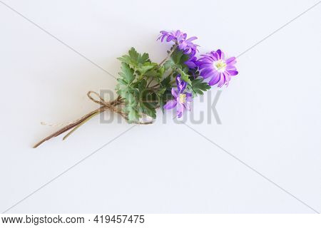 Flowers Composition. Anemone Blanda Flowers On White Wooden Background. Valentine's Day, Mothers Day