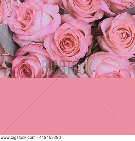 Womens Bouquet Of Roses, Top View. Creative Concept, Blank Greeting Card. Pink Background. Colorful
